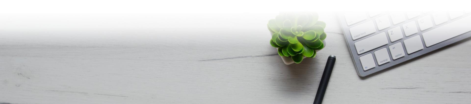 Mała roślinka obok klawiatury